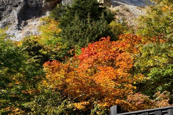 姥湯温泉の紅葉.jpg