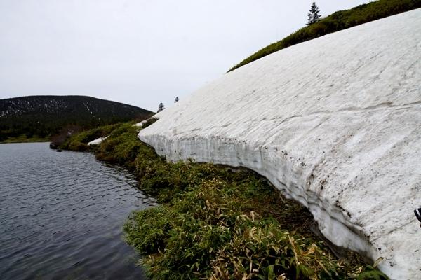 登山道8.JPG