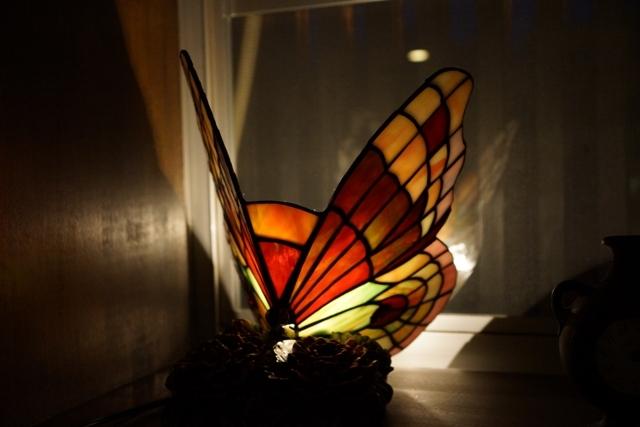蝶のステンドグラス.jpg
