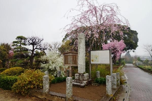 赤山城跡公園1.JPG