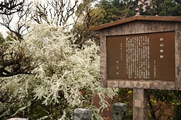 赤山城跡公園2.JPG